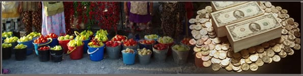 microfinance-erp